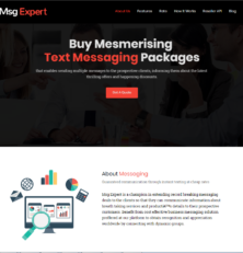 Msg Expert Review