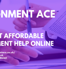 www.assignmentace.co.uk